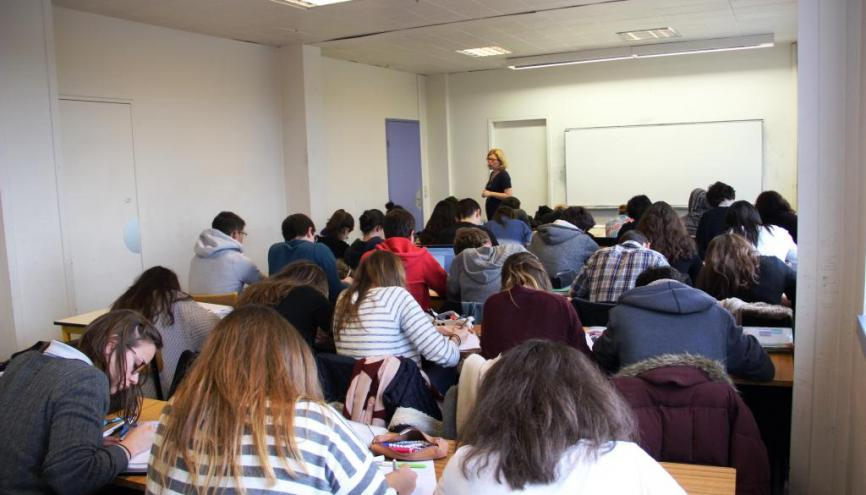 formation a distance dauphine