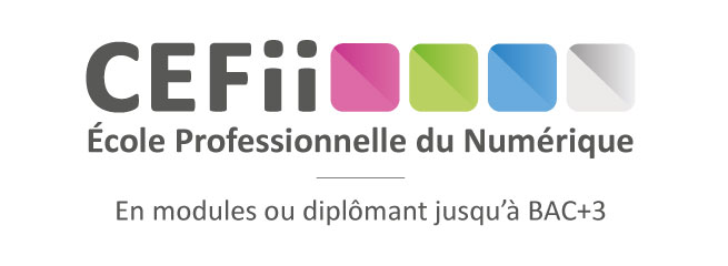 formation a distance niveau 3