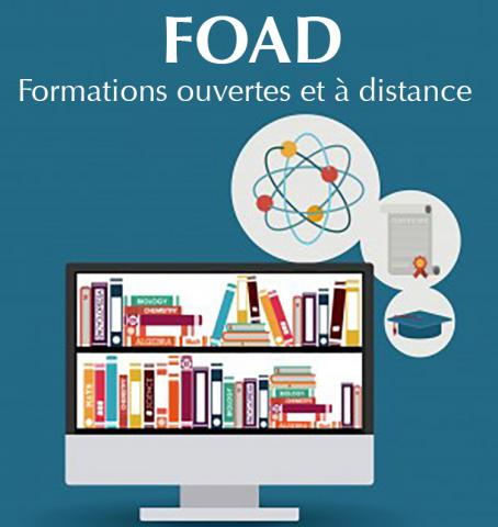 formation a distance sociologie