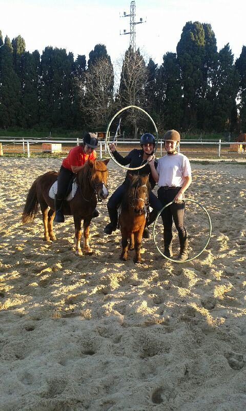 formation adulte equitation