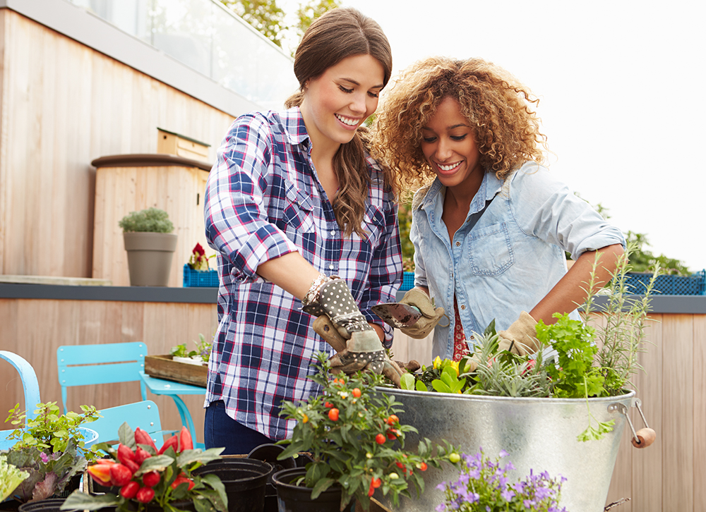 formation adulte jardinier paris