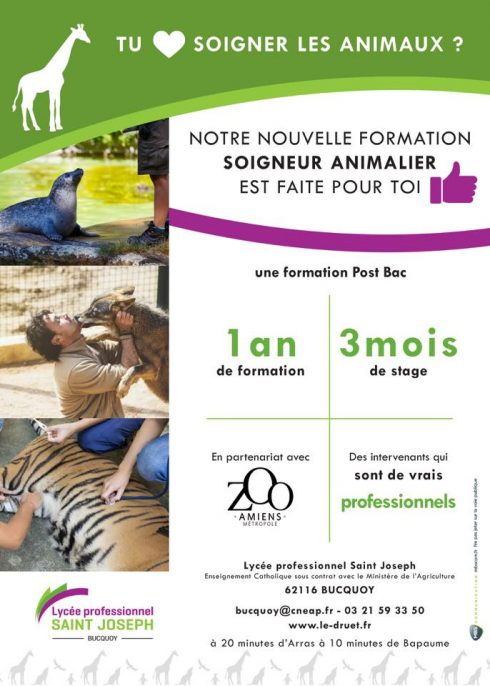 formation adulte zoologie