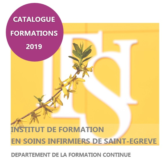 formation continue ifsi