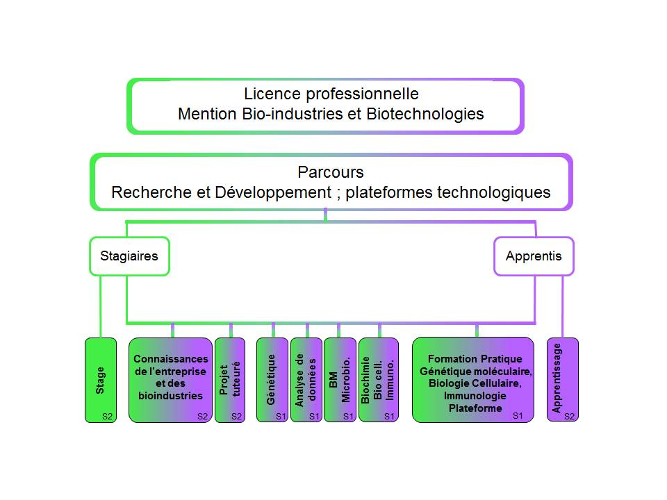 formation continue licence