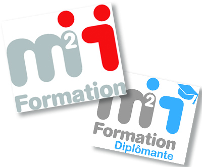 formation continue webmaster lille