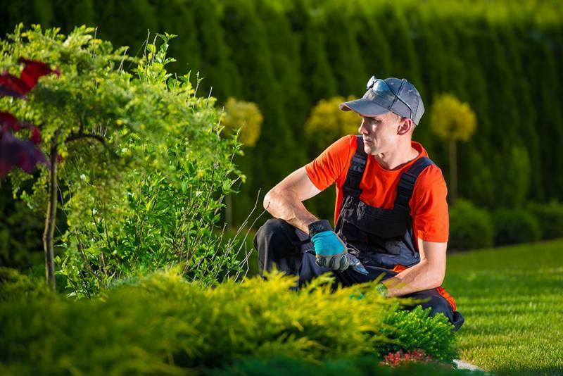 formation en ligne jardinier