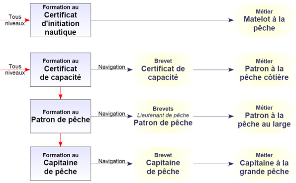 formation adulte capitaine 200